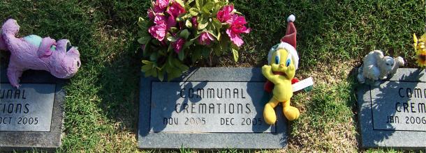 Gyvūnų laidojimas